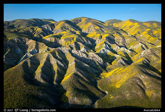 Aerial view of Temblor Range with patches of wildflowers. Carrizo Plain National Monument, California, USA (color)