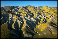 Aerial view of Temblor Range with patches of wildflowers. Carrizo Plain National Monument, California, USA ( color)