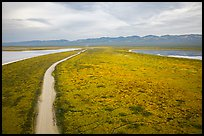 Aerial view of Carrizo Plain and lakes. Carrizo Plain National Monument, California, USA ( color)