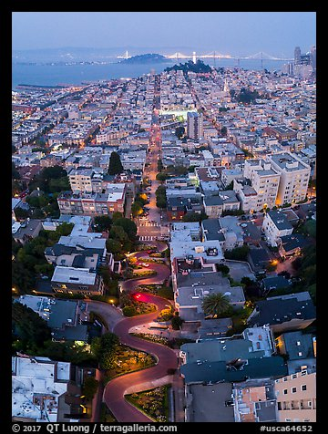 Aerial view of Lombard Street, Coit Tower, and Bay at night. San Francisco, California, USA (color)