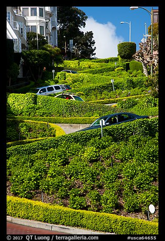 Lombard Street with cars on twists. San Francisco, California, USA (color)