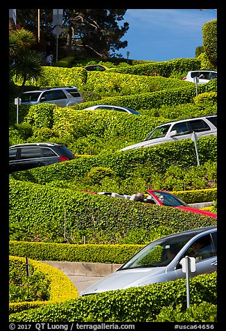 Lombard Street from the bottom with cars on turns. San Francisco, California, USA (color)
