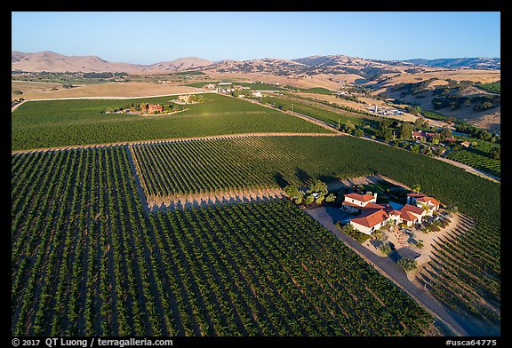 Aerial view of vineyards and wineries in summer. Livermore, California, USA (color)