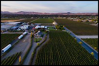 Aerial view of Concannon winery complex. Livermore, California, USA ( color)