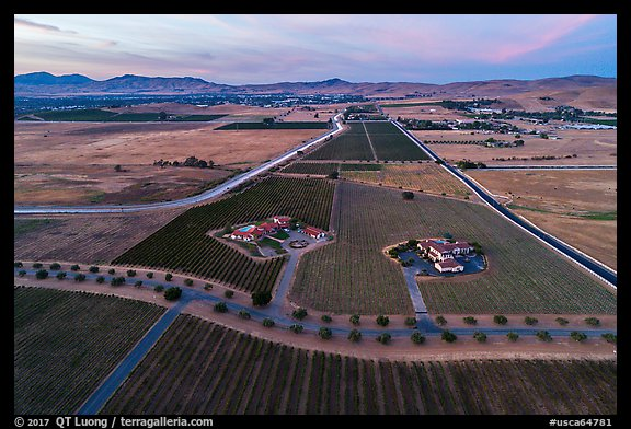 Aerial view of vineyards and wineries in summer, sunset. Livermore, California, USA (color)