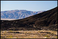 Amboy Crater slope and mountains. Mojave Trails National Monument, California, USA ( color)