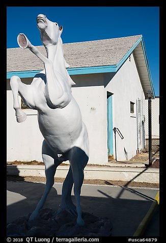 Horse sculpture, Amboy. California, USA (color)