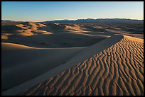 Ripples on dunes, Cadiz Sand Dunes. Mojave Trails National Monument, California, USA ( color)