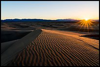 Sun setting over Cadiz Sand Dunes. Mojave Trails National Monument, California, USA ( color)