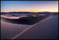 Rippled sand and ridges at dusk, Cadiz Dunes. Mojave Trails National Monument, California, USA ( color)
