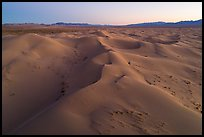 Aerial view of pristine Cadiz dunes at dusk. Mojave Trails National Monument, California, USA ( color)