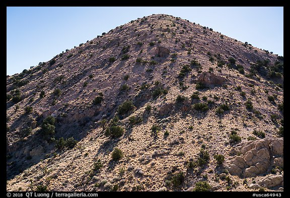 Castle Mountains peak with juniper trees. Castle Mountains National Monument, California, USA (color)