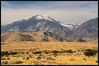 Snow-capped San Gorgonio Mountain. Sand to Snow National Monument, California, USA ( color)