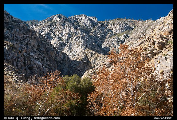 San Jacinto Peak escarpment from Chino Canyon. Santa Rosa and San Jacinto Mountains National Monument, California, USA (color)