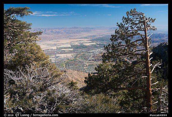 Coachella Valley seen from Mountain Station. Santa Rosa and San Jacinto Mountains National Monument, California, USA (color)