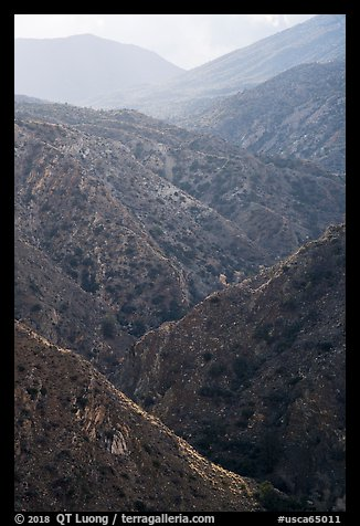 Deep Canyon. Santa Rosa and San Jacinto Mountains National Monument, California, USA (color)