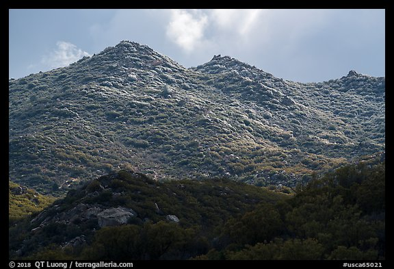 Ridge with fresh snow, Santa Rosa Mountains. Santa Rosa and San Jacinto Mountains National Monument, California, USA (color)