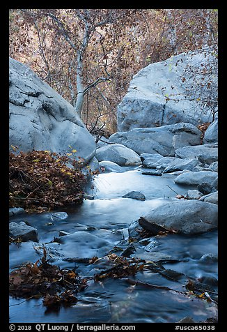 Creek below Tahquitz Falls, Tahquitz Canyon, Palm Springs. Santa Rosa and San Jacinto Mountains National Monument, California, USA (color)