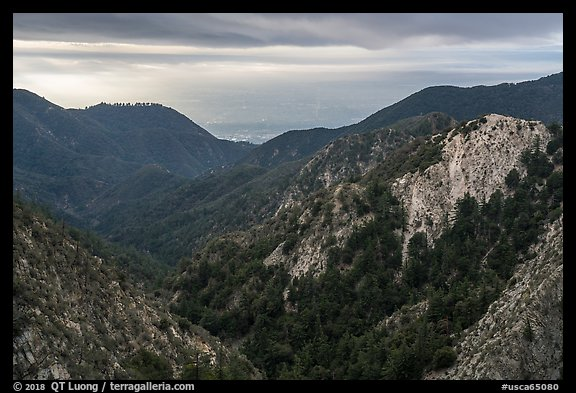 Forested mountains with Los Angeles Basin in the distance. San Gabriel Mountains National Monument, California, USA (color)