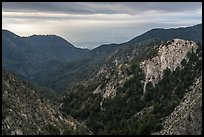 Forested mountains with Los Angeles Basin in the distance. San Gabriel Mountains National Monument, California, USA ( color)