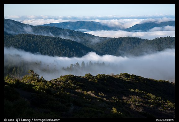 Ridges and low clouds, Snow Mountain Wilderness. Berryessa Snow Mountain National Monument, California, USA (color)