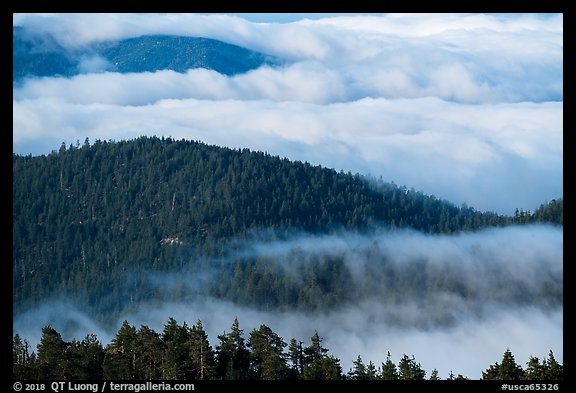 Ridges emerging from sea of clouds, Snow Mountain. Berryessa Snow Mountain National Monument, California, USA (color)