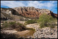 Mojave River and Afton Canyon palissades. Mojave Trails National Monument, California, USA ( color)