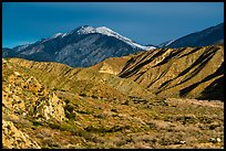San Giorgono Mountains from Mission Creek valley. Sand to Snow National Monument, California, USA ( color)