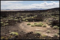 Lavic Lake volcanic field. Mojave Trails National Monument, California, USA ( color)