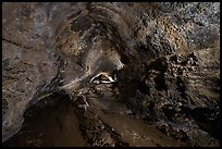 Lava tube cave, Lavic Lake volcanic field. Mojave Trails National Monument, California, USA ( color)