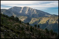 Mt Baldy from Blue Ridge. San Gabriel Mountains National Monument, California, USA ( color)