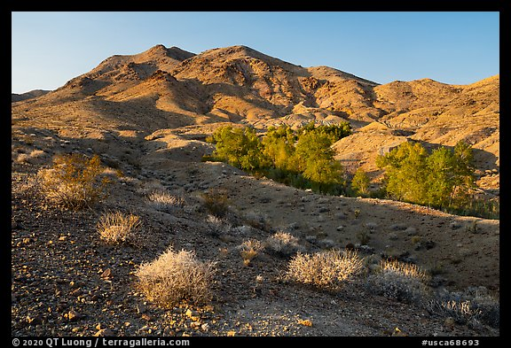 Bonanza Springs and Clipper Mountains. Mojave Trails National Monument, California, USA (color)
