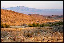 Mojave Desert hills and mountains with Bonanza Springs. Mojave Trails National Monument, California, USA ( color)