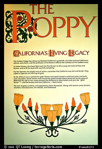Sign about the California Poppy. Antelope Valley, California, USA (color)