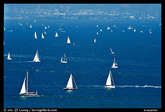 Sailboats in the Bay, seen from Marin. California, USA (color)