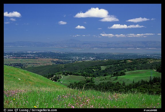 Meadows in the spring, with the Silicon Valley in the distance,  Russian Ridge Open Space Preserve. Palo Alto,  California, USA (color)