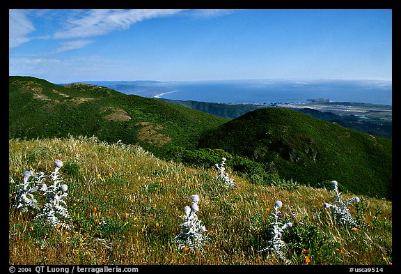 Montara Mountain and Pacific coast. San Mateo County, California, USA (color)