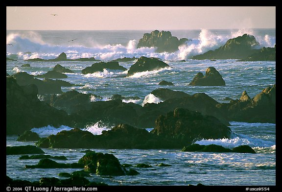 Surf and rocks, Ocean drive. Pacific Grove, California, USA (color)