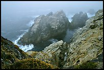 Pinnacle Cove with fog. Point Lobos State Preserve, California, USA