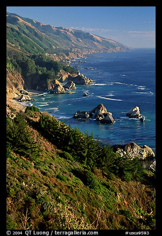 Cost from Partington Point, Julia Pfeiffer Burns State Park. Big Sur, California, USA (color)