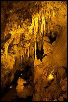 Delicate cave formations, Mitchell caverns. Mojave National Preserve, California, USA (color)