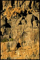 Volcanic cliff, Hole-in-the-wall. Mojave National Preserve, California, USA ( color)