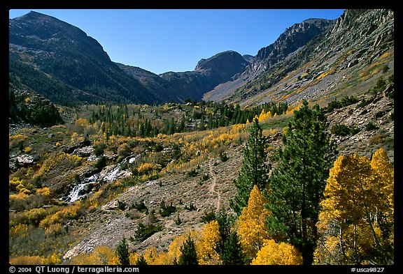 Valley in autumn, Lundy Canyon, Inyo National Forest. California, USA (color)