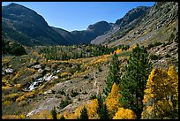 Valley in autumn, Lundy Canyon, Inyo National Forest. California, USA ( color)