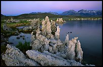 Tufas, South Tufa area,  dawn. Mono Lake, California, USA