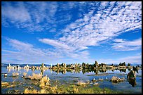Clouds and Tufa towers, morning. Mono Lake, California, USA (color)