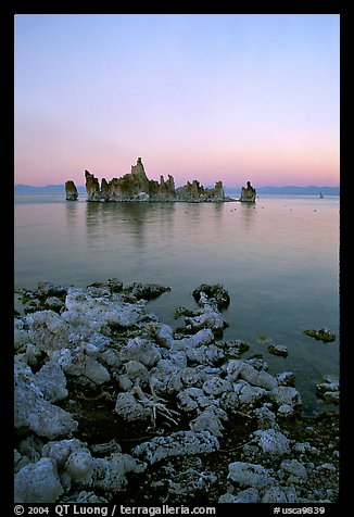 Tufa towers at dusk, South Tufa area. Mono Lake, California, USA (color)