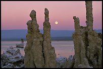 Tufa towers and moonrise, dusk. Mono Lake, California, USA
