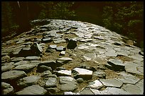 Hexagonal basalt tiles, afternoon, Devils Postpile National Monument. California, USA (color)