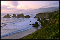 Coast with sea stacks near Rockport. Fort Bragg, California, USA ( color)